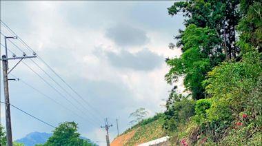 高雄》藤枝森林園區今開園 自行前往預約爆滿