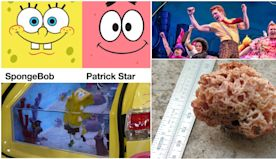Spongebob Squarepants: The 10 Weirdest Things That The Show Inspired