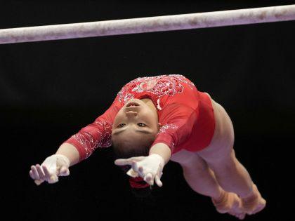 體操 世錦高低槓吊環 中國再掃兩金