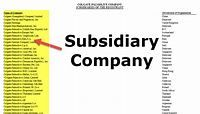 Subsidiary Company (Examples, Levels) | How does it Work?