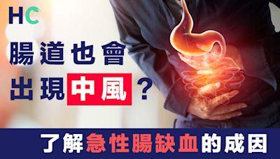 【腸道健康】腸道也會出現中風?了解急性腸缺血的成因