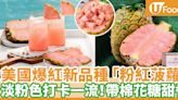 【粉紅菠蘿 香港】美國人氣粉紅菠蘿Pinkglow即將登陸香港!全港指定7間超市限量發售 | U Food 香港餐廳及飲食資訊優惠網站