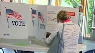 Michigan voters could play critical role in 2020 election