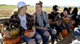 Colorado fall bucket list: 10 ways to celebrate the season, from hiking to apple-picking
