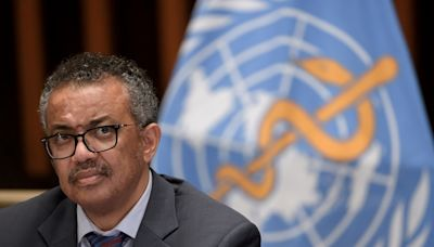 歐盟近20國支持譚德塞連任世衛秘書長