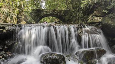 端午連假山林步道呼吸芬多精 溪流泡腳戲水能疏壓 - 工商時報