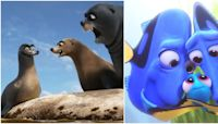 Finding Dory: 5 Things It Got Right (& 5 It Got Wrong)