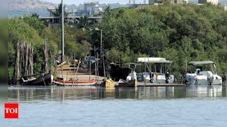 Floating jetty, 3 more boats for rides, eco-tours at Airoli bio-diversity centre   Navi Mumbai News - Times of India