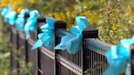 Gabby Petito's hometown honors her memory with ribbons