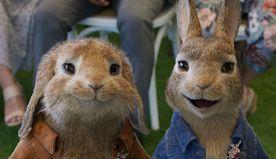 'Peter Rabbit 2: The Runaway': James Corden's Rebel Bunny Robs a Farmers Market in New Trailer (Video)