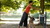 3 Ways to Live a More Sustainable Life with Your Pet