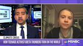 Greta Thunberg Video Manipulated To Downplay Climate Crisis | Snopes.com