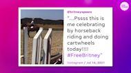 Britney Spears celebrates conservatorship win on Instagram; Ariana Grande reacts