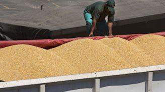 Tanzania to Sell 1 Million Tons of Corn to Drought-Hit Kenya