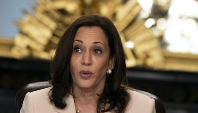 Texas Democratic congressman asks Harris to visit border, warning crisis 'will only worsen'