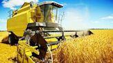 傳農肥大國中國嚴阻出口 肥料飆13年高!糧價震撼恐惡化