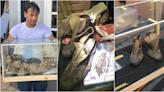 馬國收藏家割愛古董級潮鞋!104歲的Converse價錢曝光