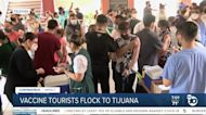 Vaccine tourist flock to Tijuana