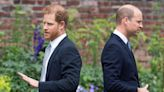 William's 'curt' birthday post to Harry shows frosty relationship, says author