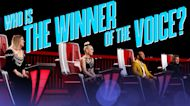 And the Winner of the Voice Is... - The Voice Live Finale Part 2