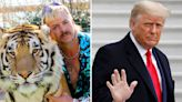 ... Exotic Fights For Donald Trump Pardon In Incumbent's Final Days; Sues DOJ To Get Into Oval Office