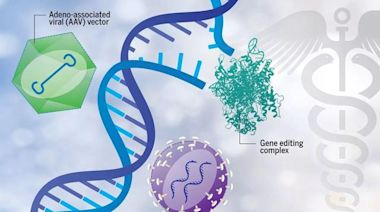 coffinSiris綜合徵是影響多種生理系統的疾病,又被稱 CSS綜合徵
