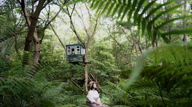 在大自然裡做白日夢 秘境宿泊給你解憂時光