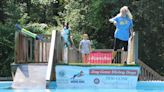Diving dogs make a splash at Lowcountry event
