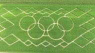 Olympics crop circles puzzle Bavarians