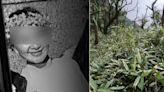 找到了!越籍廚娘登抹茶山失蹤3個月 尋獲半截遺體確認是她