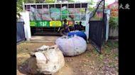斯里蘭卡愛心再啟動 回收物資變黃金