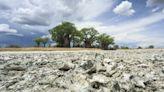人類起源地找到了! 20萬年前非洲波札那鹽沼地