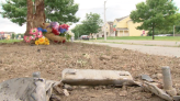 Family remembers niece killed in pedestrian accident