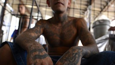 MS-13 alleged ringleaders charged with terrorism offences