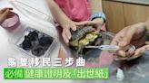 移民棄龜|龜隻移民三步曲 健康證明 「出世紙」缺一不可 | 蘋果日報