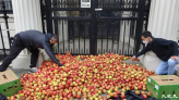 【英國即時】逾千「蘋果」倒中共使館門外