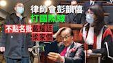 法律年︱香港護法?律師會彭韻僖打國際線 不點名批戴耀廷梁家傑   蘋果日報