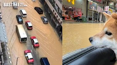 一日兩度發出黃雨警告 港九部分地區輕微水浸 | 社會事