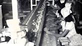 George Ashley revolutionized Mexican food, ran Ashley's Gardens restaurant: Trish Long