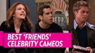 Susan Sarandon Reflects on 'Friends' Cameo, Matt LeBlanc Sex Scenes