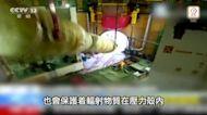 台山核電廠或因燃料棒勞損致洩漏 專家:涉質量檢測未做好