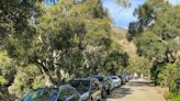 Ray Ford: Front-Country Trailhead Parking Issues Are Symbol of Larger Concerns