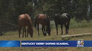 Bay Area Trainer Speaks Out On Kentucky Derby Doping Scandal