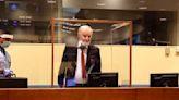 Former Bosnian Serb general Mladic appeals genocide conviction
