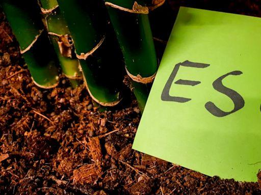 靠善良獲利的時代來了!ESG 投資人必懂的國際3大指數一次解析|經理人