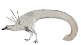 顛覆學界!新發現的奇特恐龍:身上覆蓋華麗鬃毛、肩膀插著4根「長矛」