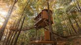 Safe Travels: Sleep in the trees with these magical Upstate NY treehouses