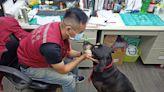 狂犬病疫苗免費打 新北國際狗狗日開放帶毛孩上班