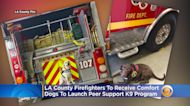 LA County Firefighters To Receive Comfort Dogs To Launch Peer Support K9 Program