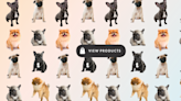 The dark side of the 'puppies of Instagram' fad